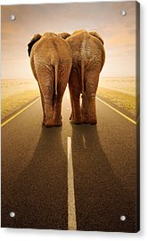 Going Away Together / Travelling By Road Acrylic Print by Johan Swanepoel