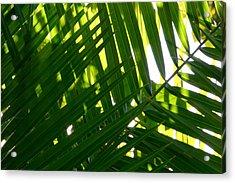 Going Green Acrylic Print by Brad Scott