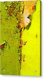 Going Green Acrylic Print by Skip Hunt