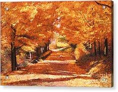Golden Autumn Acrylic Print by David Lloyd Glover
