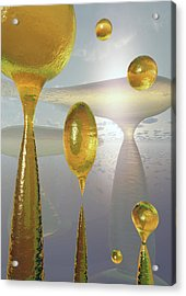 Golden Globs Acrylic Print by Richard Rizzo