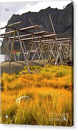 Golden Gras And Fish Drying Rack Acrylic Print by Heiko Koehrer-Wagner