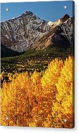 Golden Mountain Scene Acrylic Print by Andrew Soundarajan