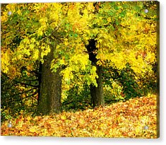 Golden October Acrylic Print by Angela Doelling AD DESIGN Photo and PhotoArt