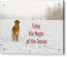 Golden Retriever Dog Magic Of The Season Acrylic Print by Jennie Marie Schell