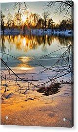 Golden Snow Acrylic Print by Robert Pearson
