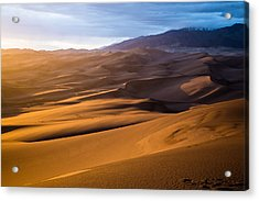 Golden Sunset In The Dunes Acrylic Print by Adam Pender