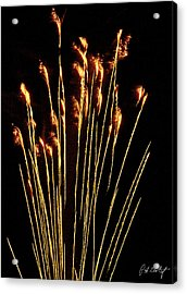 Goldenrod Acrylic Print by Phill Doherty