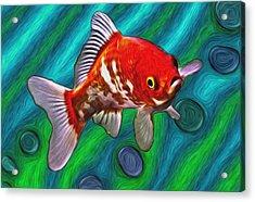 Goldfish Acrylic Print by Eastern Sierra Gallery