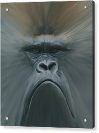 Gorilla Freehand Abstract Acrylic Print by Ernie Echols