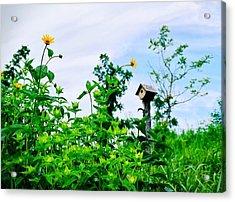 Governors Island Birdhouse Acrylic Print by Sandy Taylor