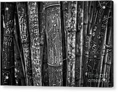 Graffiti Laden Bamboo Black And White Acrylic Print by Edward Fielding