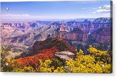 Grand Arizona Acrylic Print by Chad Dutson