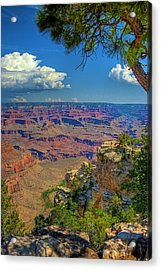 Grand Canyon Vista Acrylic Print by William Wetmore