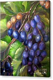 Grapevine Acrylic Print by Carol Sweetwood
