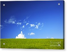 Grass Cloud Sky Acrylic Print by Brandon Tabiolo - Printscapes