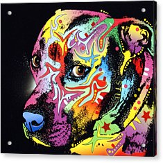 Gratitude Pit Bull Warrior Acrylic Print by Dean Russo