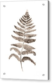 Gray Fern Watercolor Art Print Painting Acrylic Print by Joanna Szmerdt