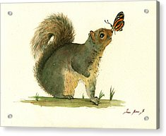 Gray Squirrel Butterfly Acrylic Print by Juan Bosco