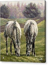 Grazing Acrylic Print by Thomas Allen Pauly