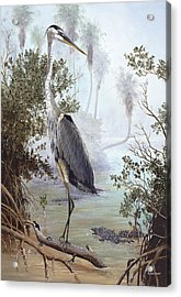 Great Blue Heron Acrylic Print by Kevin Brant