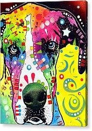 Great Dane Warpaint Acrylic Print by Dean Russo