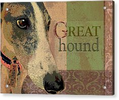 Great Greyhound Acrylic Print by Wendy Presseisen