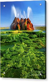 Green Fly Geyser Acrylic Print by Inge Johnsson