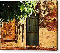 Green Leaves And Wall By Michael Fitzpatrick Acrylic Print by Mexicolors Art Photography