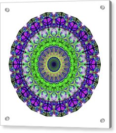 Green Light Mandala Art By Sharon Cummings Acrylic Print by Sharon Cummings