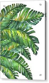Green Tropic  Acrylic Print by Mark Ashkenazi