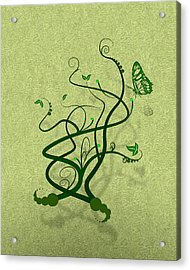 Green Vine And Butterfly Acrylic Print by Svetlana Sewell