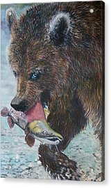 Grizzly With Salmon Acrylic Print by Penny Winn