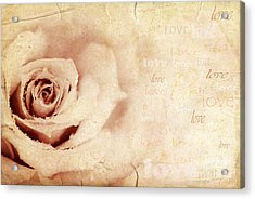 Grungy Rose Background Acrylic Print by Anna Om