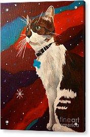 Guenhwyvar The Cat In Space Acrylic Print by Ashley Baldwin
