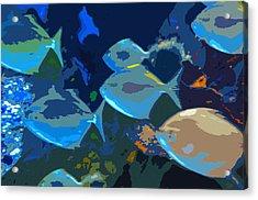 Gulf Stream Acrylic Print by David Lee Thompson