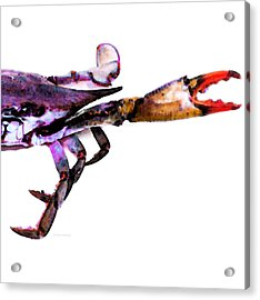 Half Crab - The Right Side Acrylic Print by Sharon Cummings