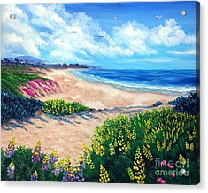 Half Moon Bay In Bloom Acrylic Print by Laura Iverson