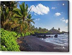 Hana Bay Palms Acrylic Print by Inge Johnsson