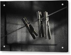 Hangin On Acrylic Print by Scott Norris