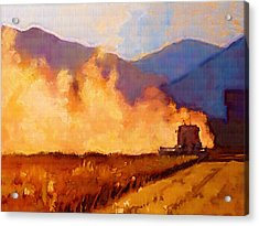 Harvest Time Acrylic Print by Robert Bissett