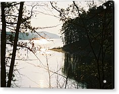 Haven Of Trees Acrylic Print by Kicking Bear  Productions