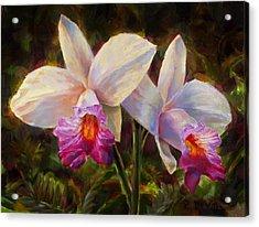 Hawaiian Bamboo Orchid Acrylic Print by Karen Whitworth