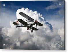 Hawker Fury Acrylic Print by J Biggadike