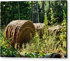 Hay Bay Rolls Acrylic Print by Lanjee Chee