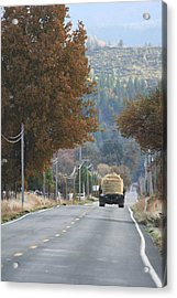 Hay Day Acrylic Print by Holly Ethan