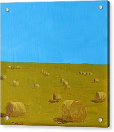 Hay Harvest Acrylic Print by Tom Amiss