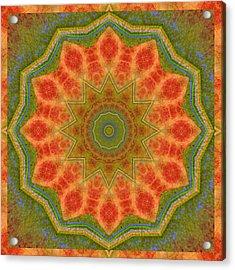 Healing Mandala 14 Acrylic Print by Bell And Todd