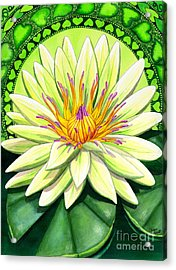 Heart Chakra Acrylic Print by Catherine G McElroy