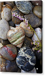 Heart Stone With Wild Flower Acrylic Print by Garry Gay